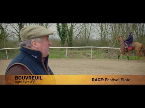 Paul Nicholls Day Three Cheltenham Runners Preview