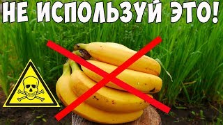 видео Удобрения из банановой кожуры (шкурок) для цветов, комнатных растений