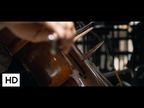 So klingt die Zukunft! Die 12 Cellisten der Deutschen Stiftung Musikleben