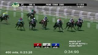 Vidéo de la course PMU PREMIO FERNAN 2005 (PELOTON B)