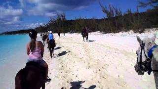 Horseback riding (Our Honeymoon)