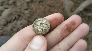 НАШЕЛ МНОГО СЕРЕБРА   В поисках золота и старины   поиск монет с металлоискателем Xp Deus