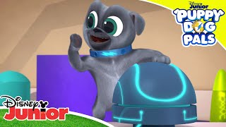 🗝 Key Chase | Puppy Dog Pals | Disney Junior UK