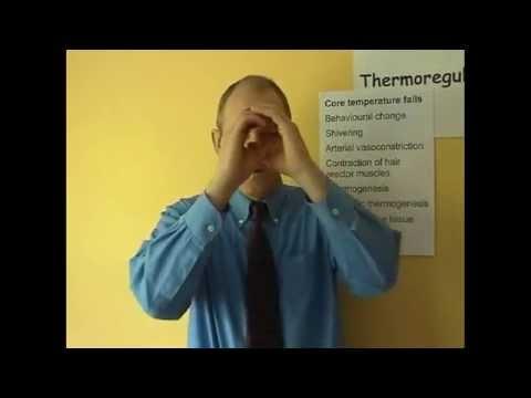 Thermoregulation 7, Homeostais of heat balance