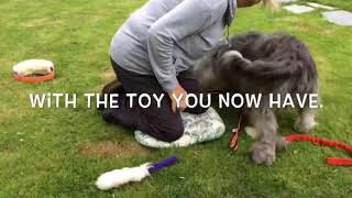 Play with my toy