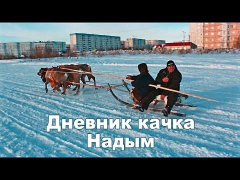 россия надым сайт знакомств