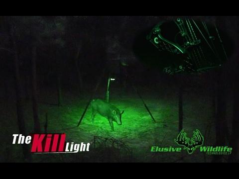 Kill Lights Own The Night