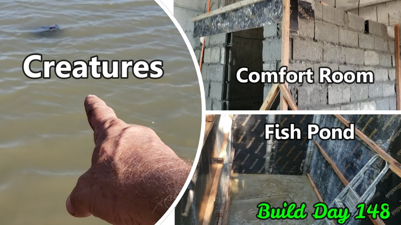 Philippines Beach House Build Day 148 : Fish Pond Liner , Tilapia , Restroom Walls , Forms removed