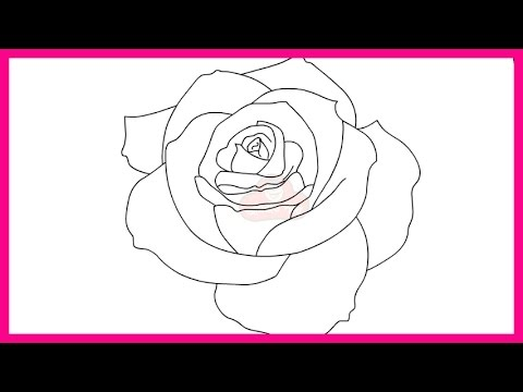 How to draw a rose step by slow howsto co for How to draw a rose step by step for beginners