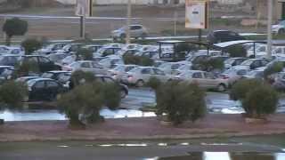تحقيقات الوطن الجزائرية - قطاع النقل وفوضى إستيراد السيارات في الجزائر -