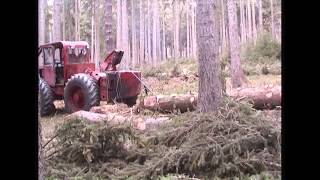 Forstschlepper Lakatos LKT 80 Stammholzrückung Fichte 18/60 o.R. 5,1 FM
