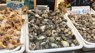 Rynek w Maladze - Hiszpania po Polsku