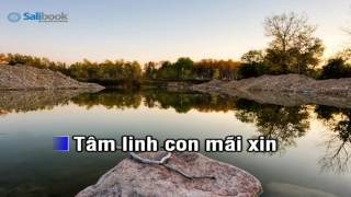 [Karaoke TVCHH] 112- TÂM HỒN TRONG TRẮNG - Salibook