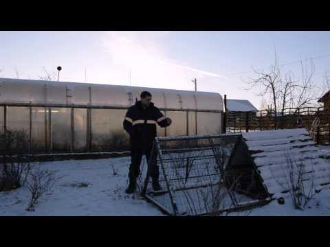 Видео Кормушка для куриц