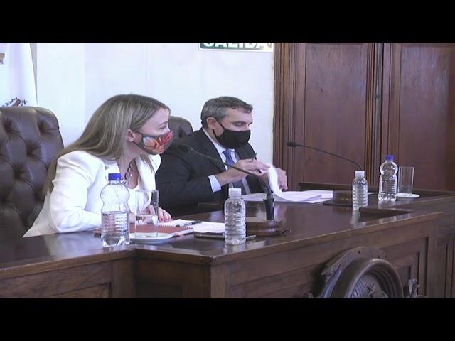 Sesión Especial. Asunción cargos Defensoría (1-10-2020)