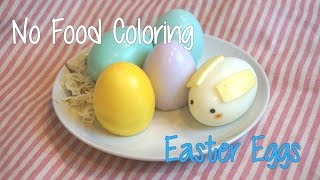 No Food Coloring Edible Easter Egg(イースターエッグの作り方)