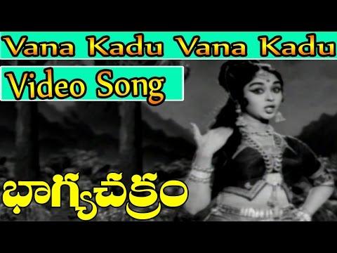Bhagya Chakram Movie Songs - Vana Kadu Vana Kadu | NTR | B Saroja Devi | V9 Videos