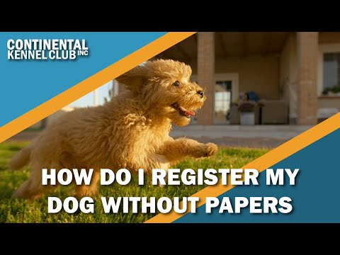 How Can I Register a Dog Without Papers?