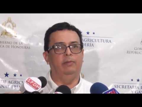 Conferencia de Prensa sobre Cacao