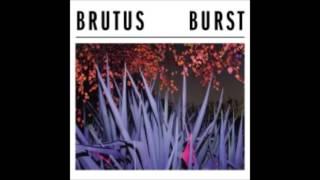 Brutus   Drive