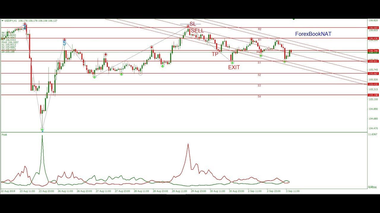 Forex Systems Forex Elliott Wave And Peak System Youtube