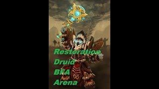 Resto Druid PVP BFA   Full Video   Arena 2v2 #Druid #Warlock