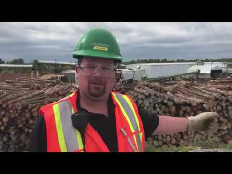 A Video Tour Of EACOM's Century-old Timmins Sawmill