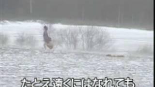 懐メロカラオケ 「北の蛍」原曲 ♪森 進一.