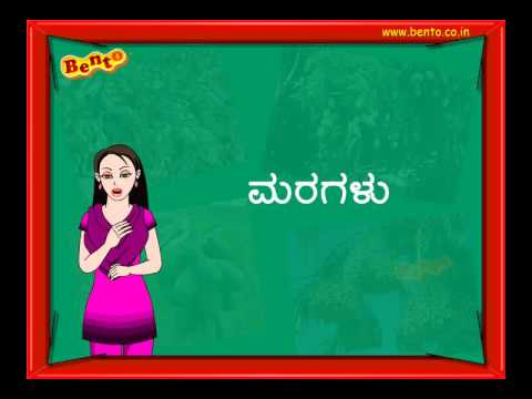 uses of plants and trees in kannada