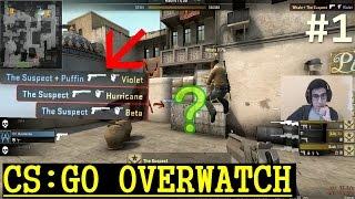 WALL HACK SEZİYORUM | CS:GO Overwatch Türkçe | Bölüm 1