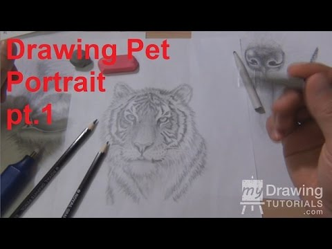 Drawing Pet Portraits Part 1 - How To Draw A Dog's Eye