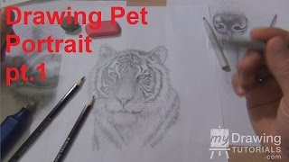 Drawing Pet Portraits Part 1 - How To Draw A Dog