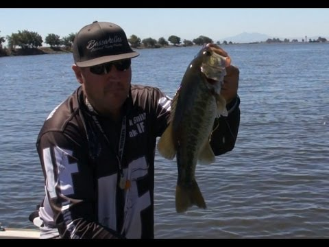 Introduction to bass fishing youtube for Youtube bass fishing