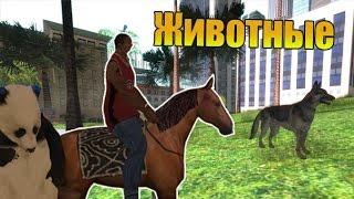 """Мифы GTA San Andreas - (Выпуск 35 """"Животные"""")"""
