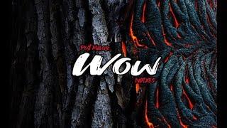 Post Malone - Wow (NOIXES Trap Remix)