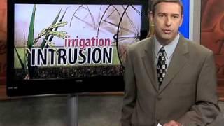 Louisiana Farm Bureau: Rice Saltwater Intrusion