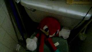 knukles 1st using the potty :P