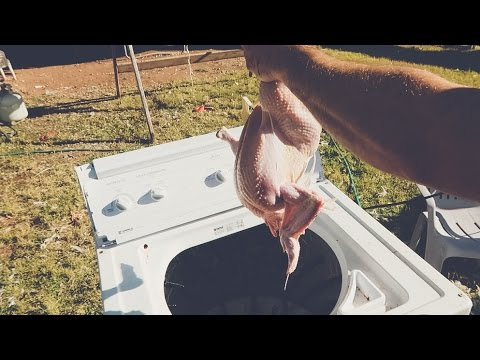 CHICKEN PLUCKER from a WASHING MACHINE?!