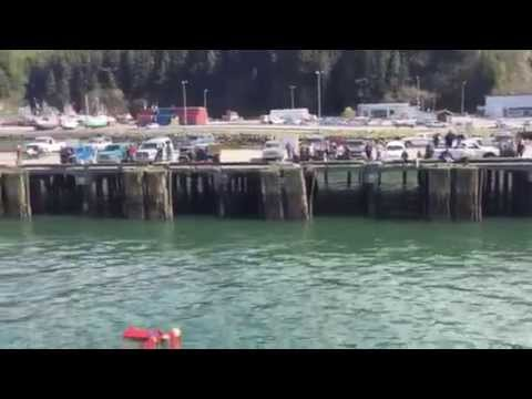 Massive Flotilla – Navy Protest in Cordova, Alaska May 16, 2015