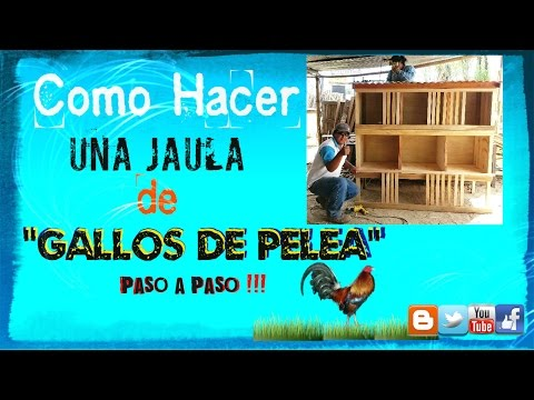 Como hacer una jaula de gallos de pelea how to make a for Como construir una pileta de hormigon