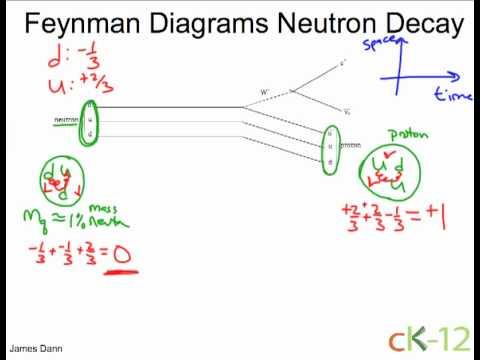 neutron diagram #14