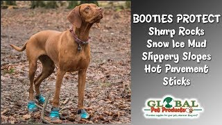 dog snow boots available here dog snow boots