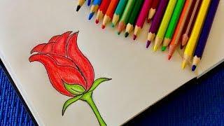 Как легко нарисовать розу, просто повторяйте за мной шаг за шагом. Простые рисунки.