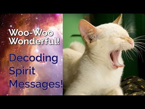 Animal Totems & Spirit Messages Decoder Ring? | Woo-Woo Wond