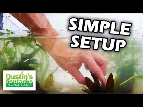 How i would setup a 10 gallon planted aquarium youtube for Dustins fish tanks