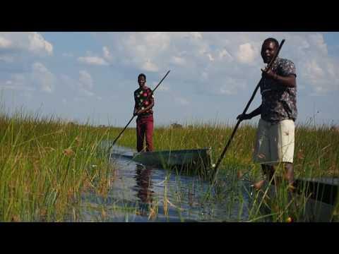 P5098223   Tegenliggers in de Okavango delta