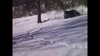 Snow, Spotty Potty 2