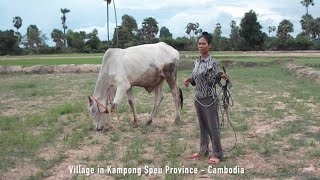 Hometown Village in Kampong Speu Province of Cambodia
