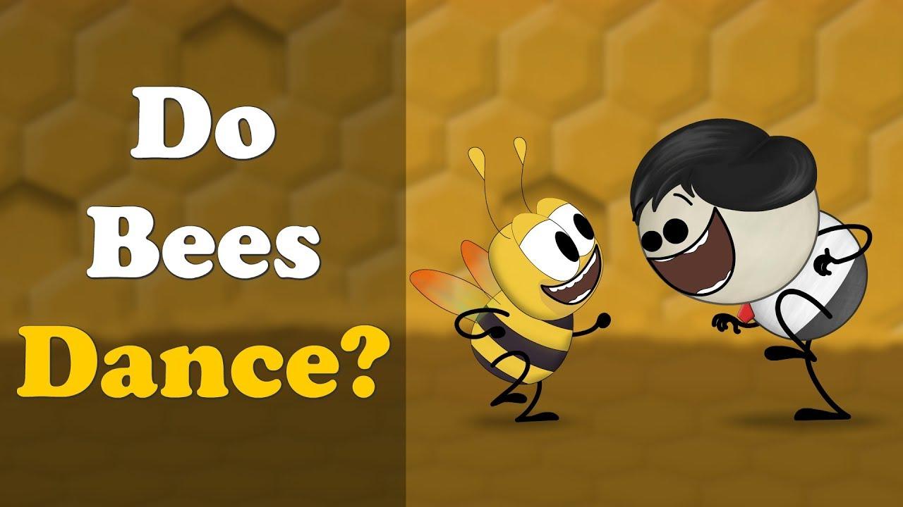 Do Bees Dance? + more videos | #aumsum #kids #science #education #children
