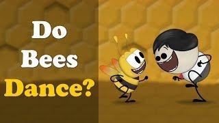 Do Bees Dance? | #aumsum